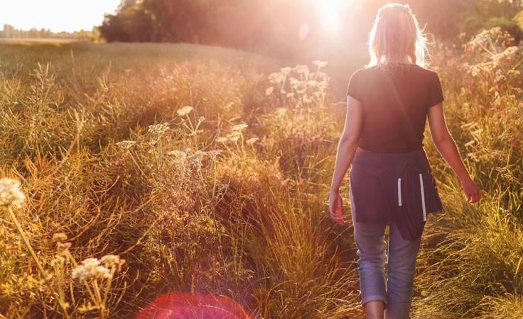 Spaziergang im Feld